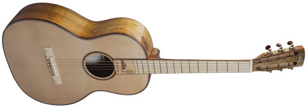 Acoustic Soundboard: A Guitar Grows in Monticello