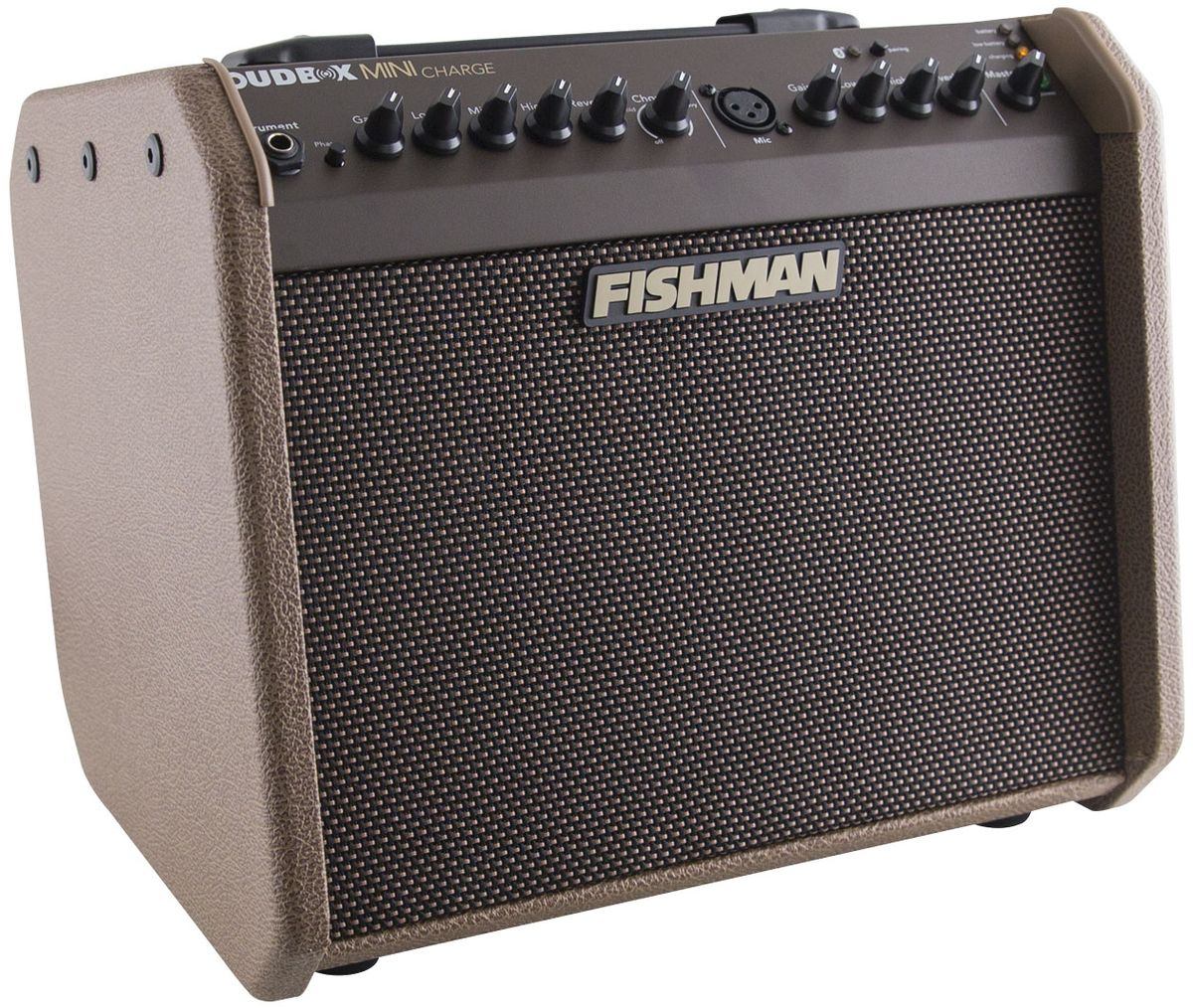 Quick Hit: Fishman Loudbox Mini Charge Review