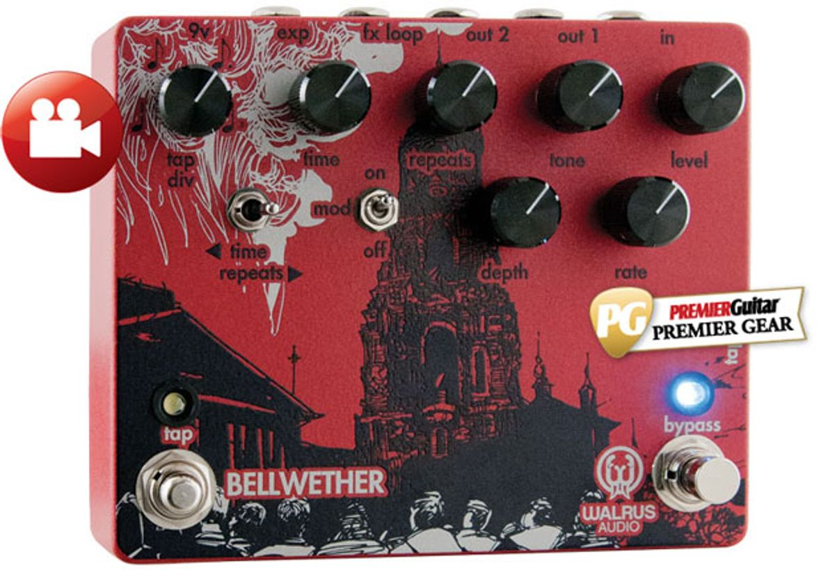 Walrus Bellwether Review