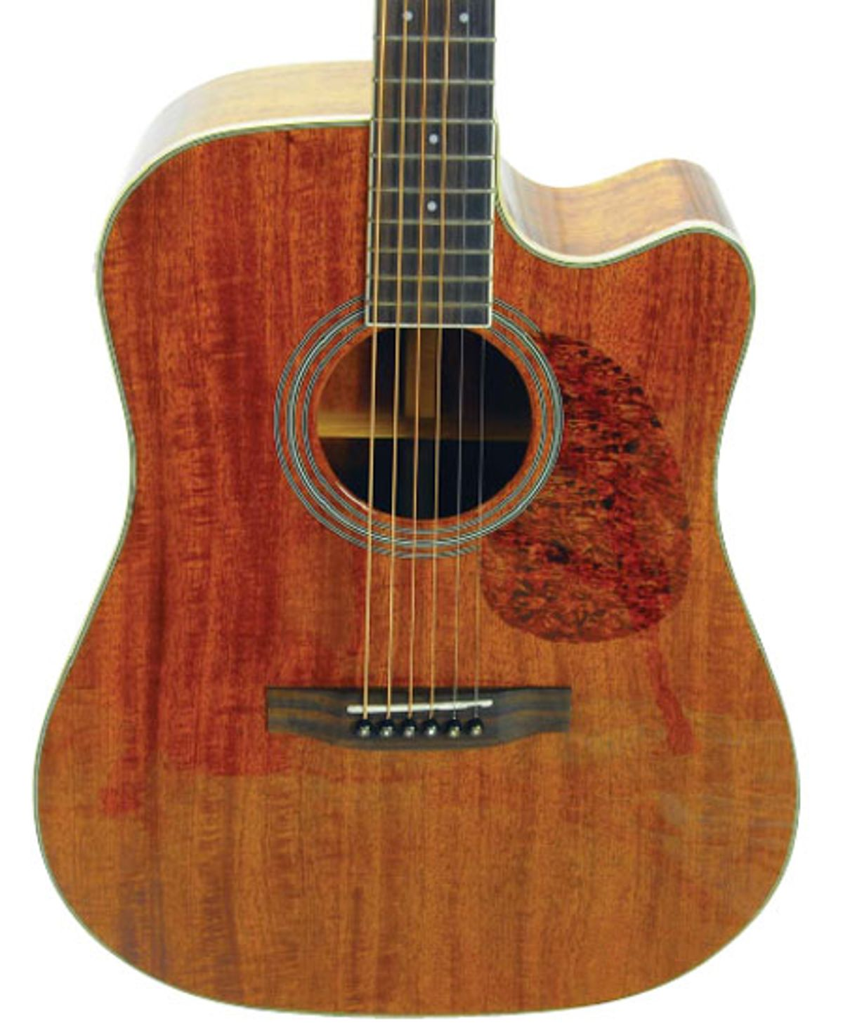 Carvin Cobalt C770T Acoustic/Electric Guitar Review