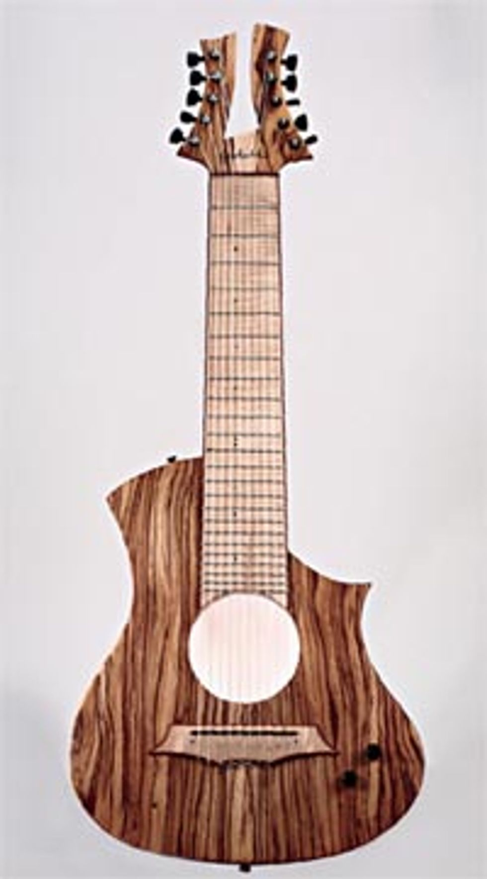 Gadotti: The 10-string King Nylon Electric