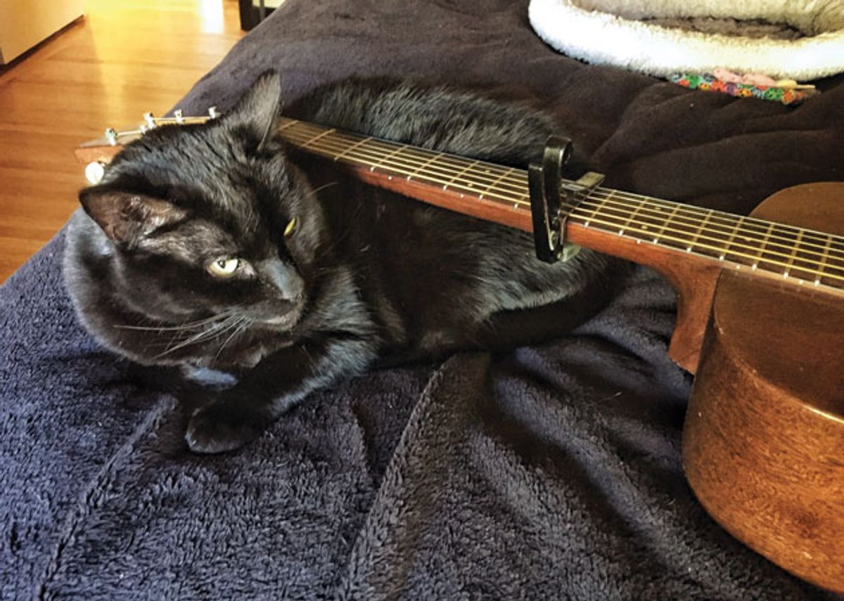 The Recording Guitarist: Cunning Transposition Tricks