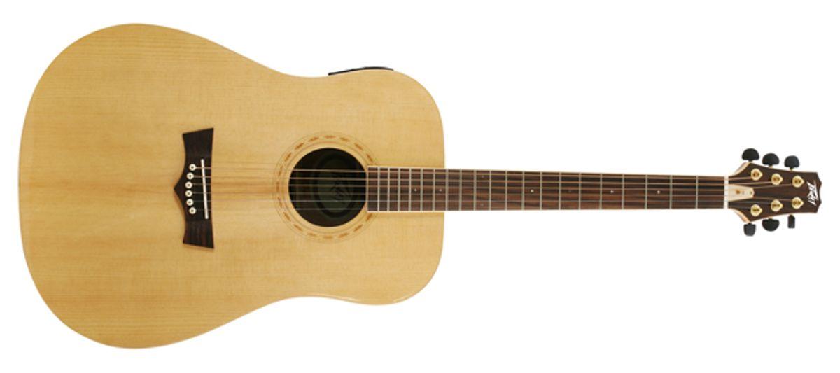 Peavey Announces DW Acoustic Guitar Series