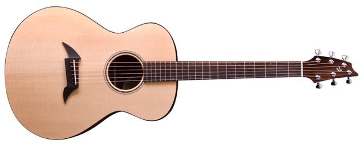 Breedlove American Series C20 Acoustic Guitar Review