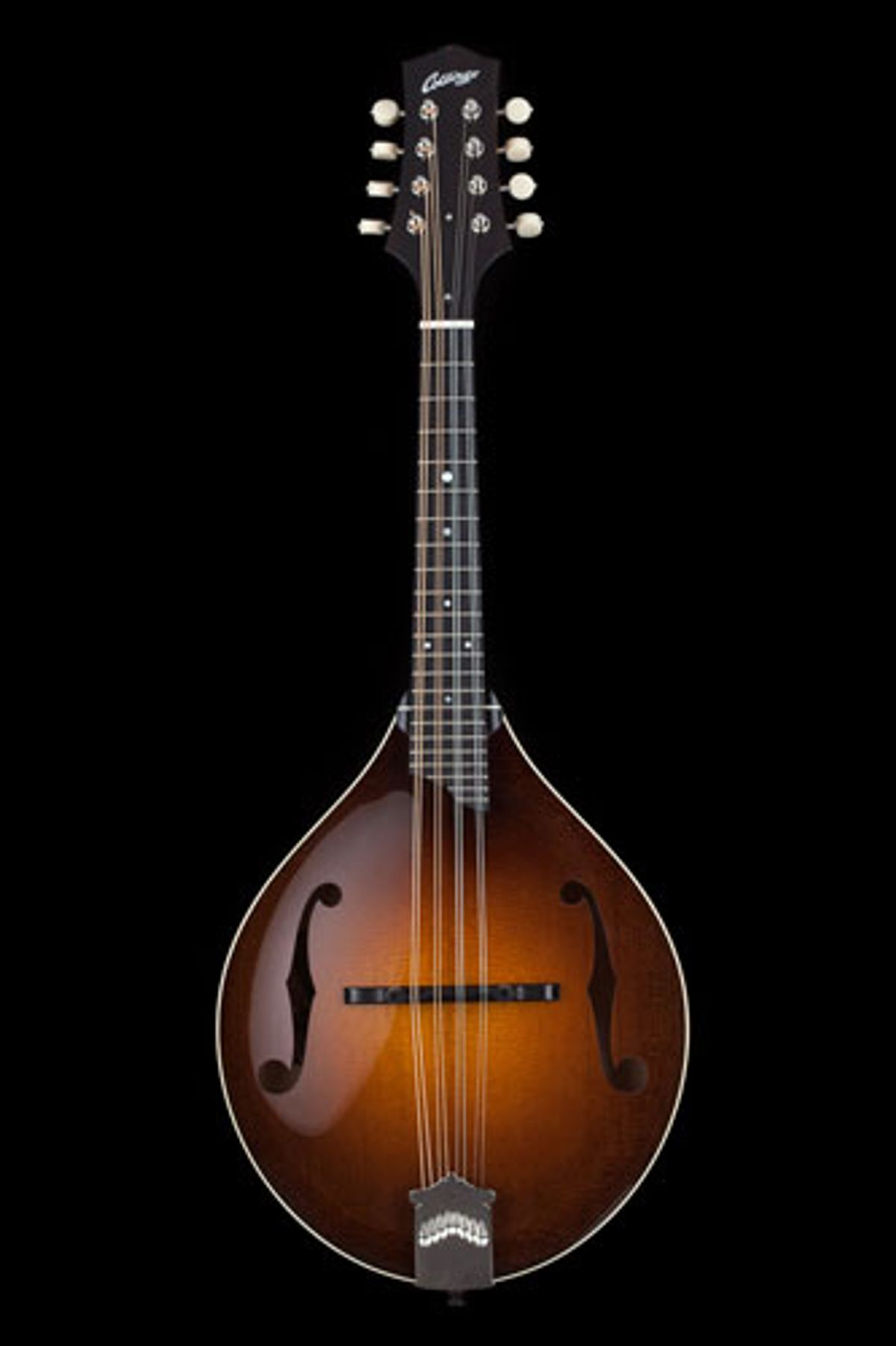 Collings Introduces the New MT Torrefied