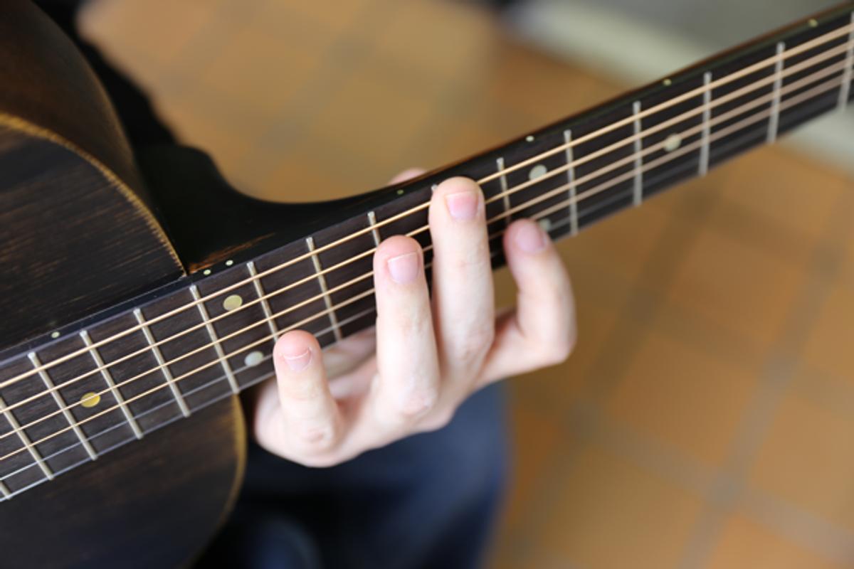 Acoustic Adventures: Harmonic Visions
