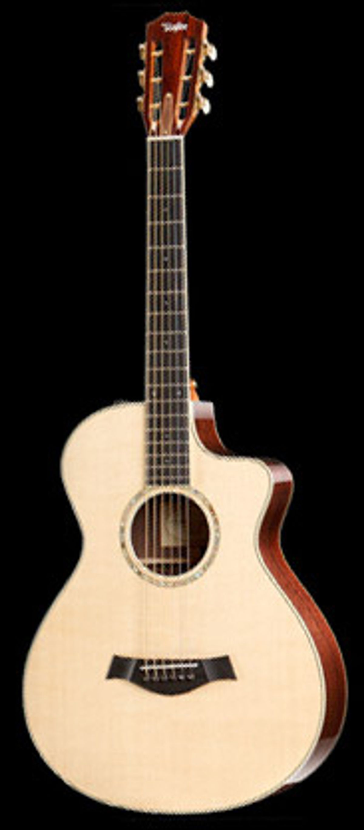 Taylor Guitars Adds 12-Fret Model to Specialty Line