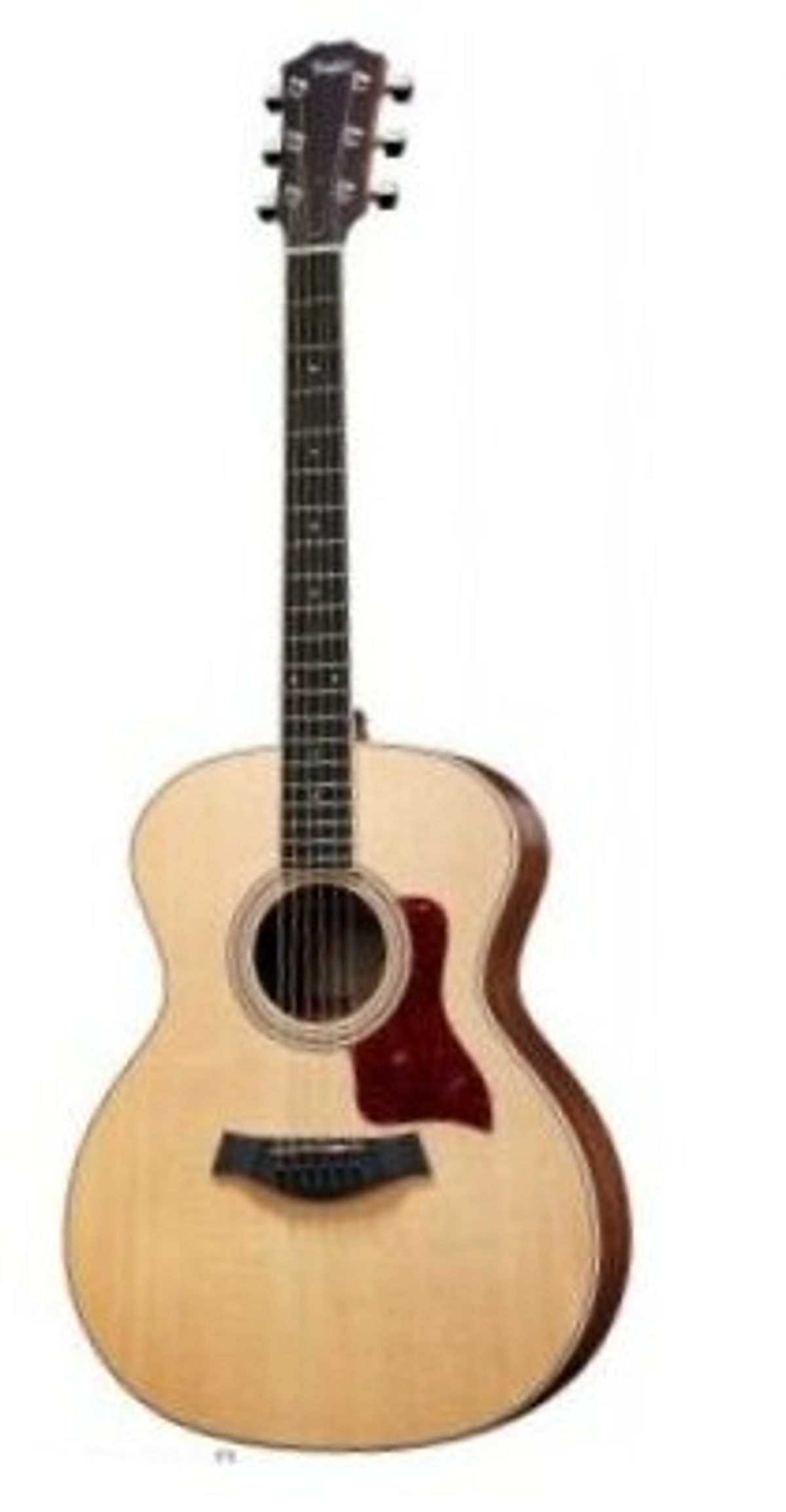 Fender and Taylor Team Up in Europe