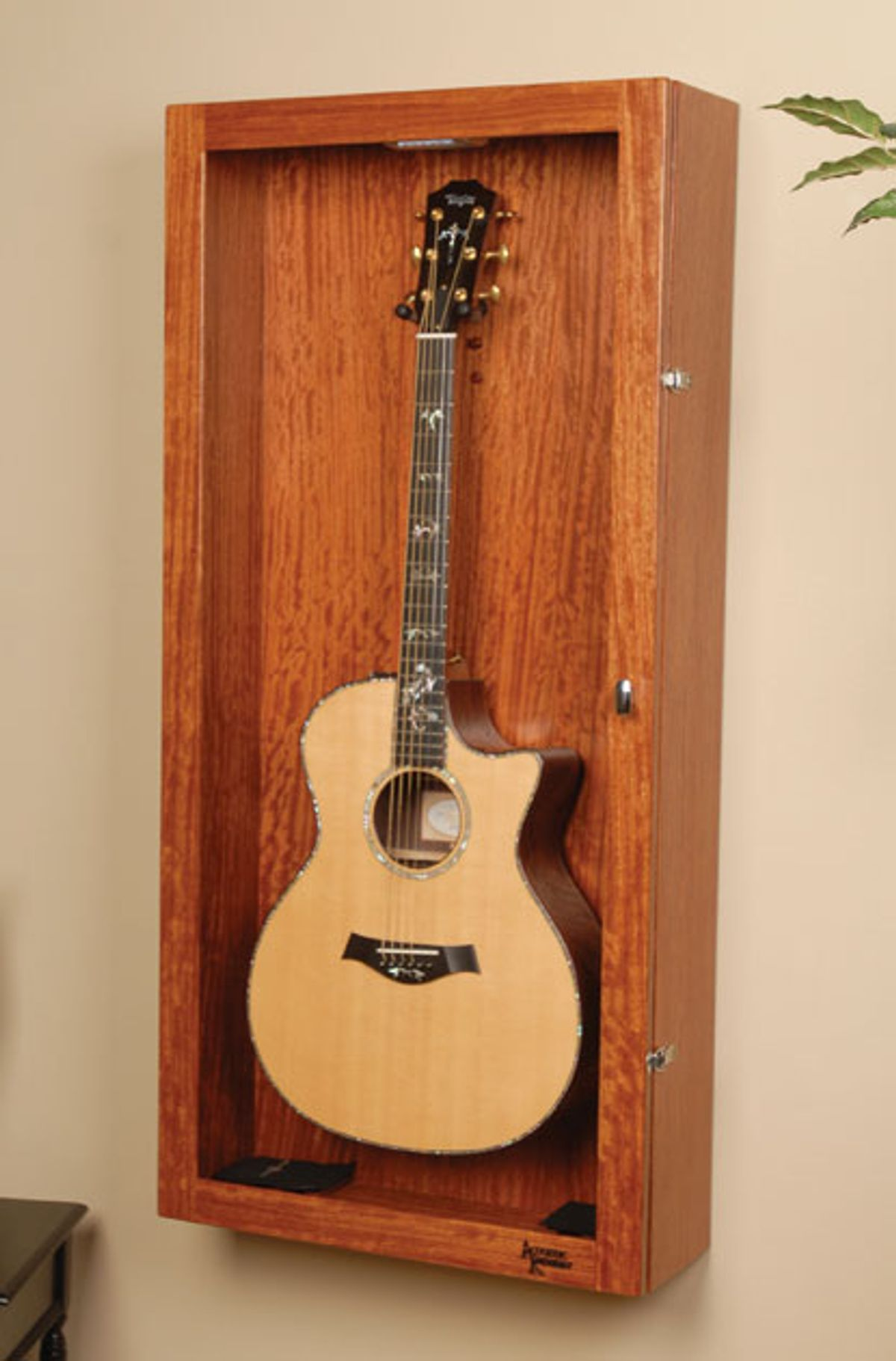 Acoustic Soundboard: Appreciating the Beauty of Underused Guitars