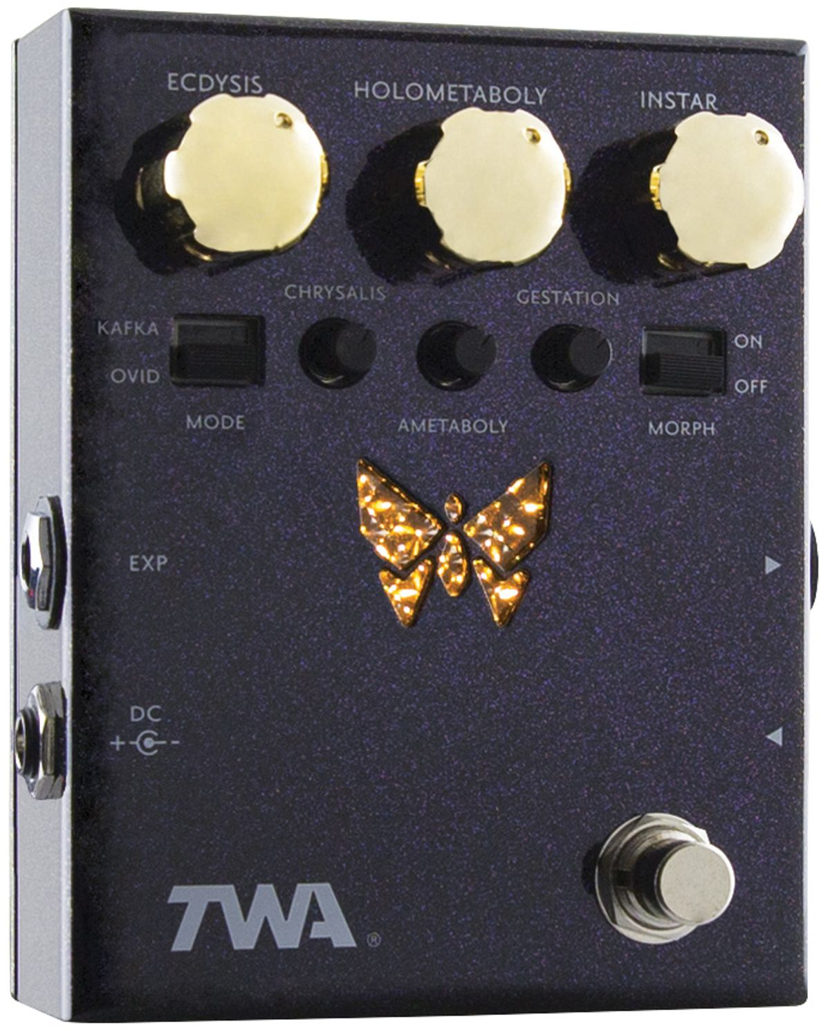 TWA DM-02 Dynamorph Review