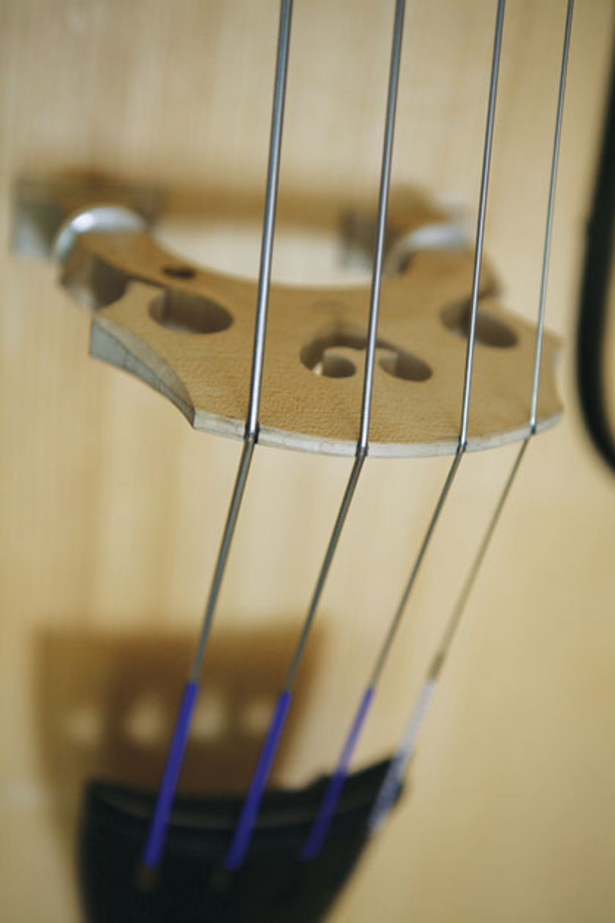 Bass Bench: Cold Facts About Strings