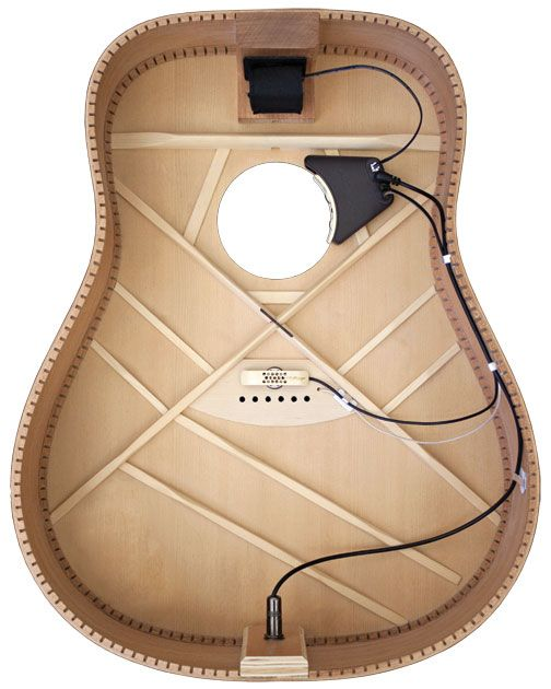 Bass Bench: Using Microphones in Acoustic Bass Guitars